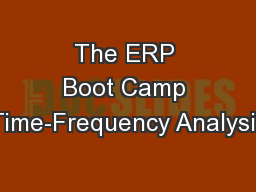 The ERP Boot Camp Time-Frequency Analysis