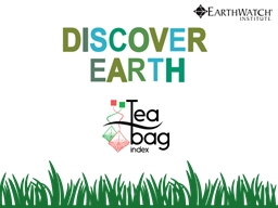 What is the Tea Bag Index?