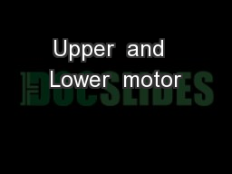 Upper  and  Lower  motor