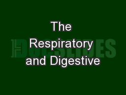The Respiratory and Digestive PowerPoint PPT Presentation