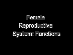 Female Reproductive System: Functions