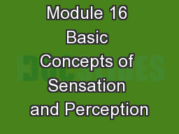 Module 16 Basic Concepts of Sensation and Perception