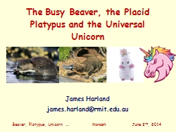 The Busy Beaver, the Placid Platypus and the Universal