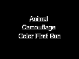 Animal Camouflage Color First Run
