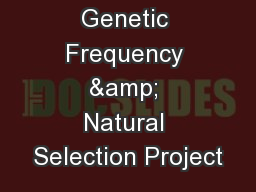 Genetic Frequency & Natural Selection Project PowerPoint PPT Presentation