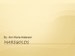 Marigolds By: Ann Marie Anderson