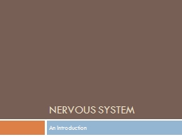 Nervous System An Introduction