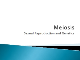 Meiosis Sexual Reproduction and Genetics