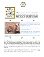 Adopt a Golden Atlanta Wins Coveted Starfish Award Gol