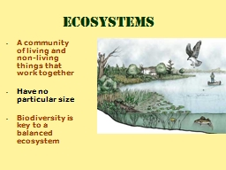 A community of living and non-living things that work together PowerPoint PPT Presentation
