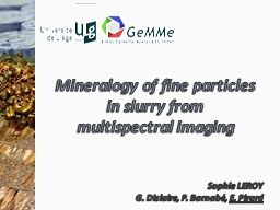 Mineralogy  of fine particles in slurry from