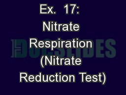 Ex.  17:  Nitrate Respiration (Nitrate Reduction Test)