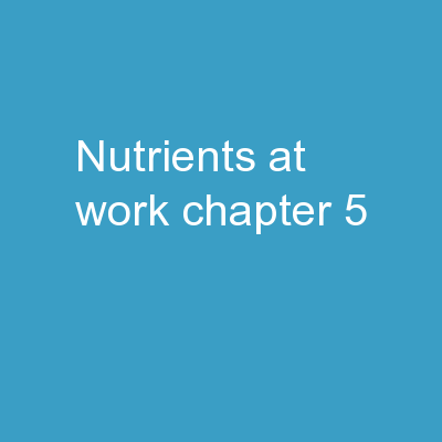 Nutrients at Work Chapter 5
