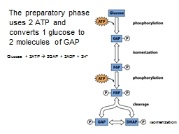 The preparatory phase uses 2 ATP and converts 1 glucose to 2 molecules of GAP