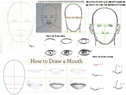 Ears should start just above the eyes and go down to near the bottom of the nose PowerPoint PPT Presentation