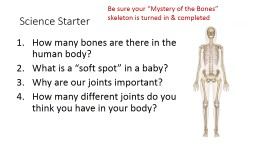 Science Starter How many bones are there in the human body?