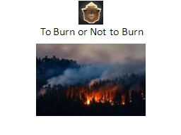 To Burn or Not to Burn Wildfire