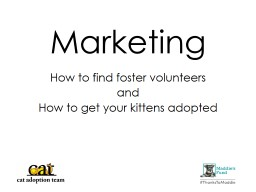 Marketing How to find foster volunteers
