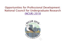 Opportunities for Professional Development:
