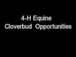 4-H Equine  Cloverbud  Opportunities