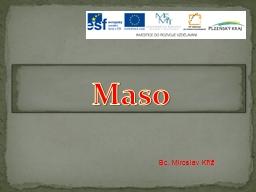 Maso Bc. Miroslav Kříž