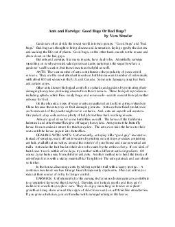 Ants and Earwigs Good Bugs Or Bad Bugs by Vera Strader PDF document - DocSlides