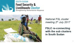 Sub National FSL cluster meeting,