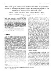 FEBS  FEllS Letters     Nitric oxide ejects electrons
