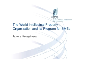 The World Intellectual Property Organization and Its Program for SMEsT