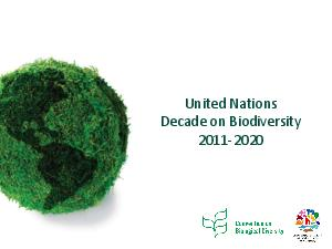 United Nations Decade on Biodiversity   UN Decade for Biodiversity Requests the Secretary General in this regard in consultation with Member States to lead the coordination of the activities of the De