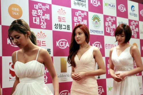 Much Pics Of T-ara @ 20th Korean Culture & Entertainment Awards (27)