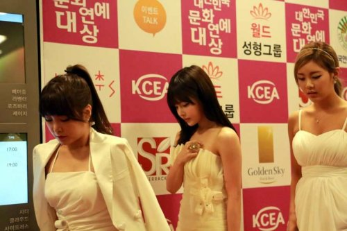Much Pics Of T-ara @ 20th Korean Culture & Entertainment Awards (29)