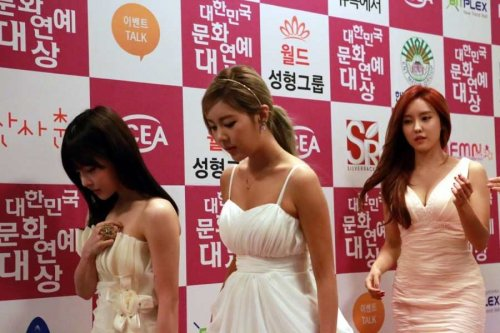 Much Pics Of T-ara @ 20th Korean Culture & Entertainment Awards (36)