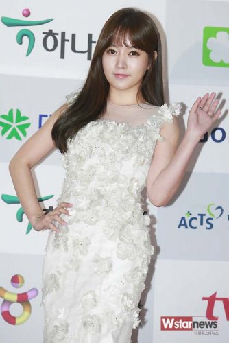 APAN Star Awards (11/2013)