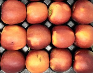 Packing flat of apples showing more of a blush red than full red coloring, considered to be under-colored.