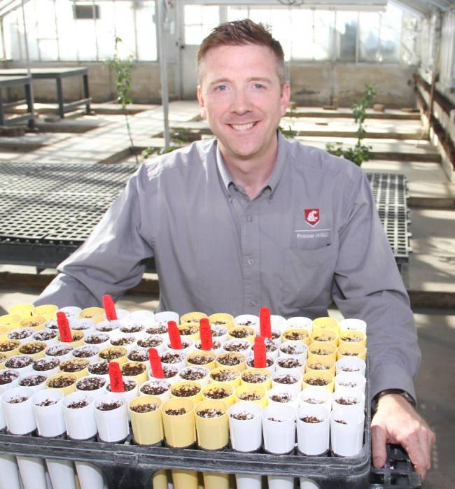 Per McCord sits with cherry tree soil samples.
