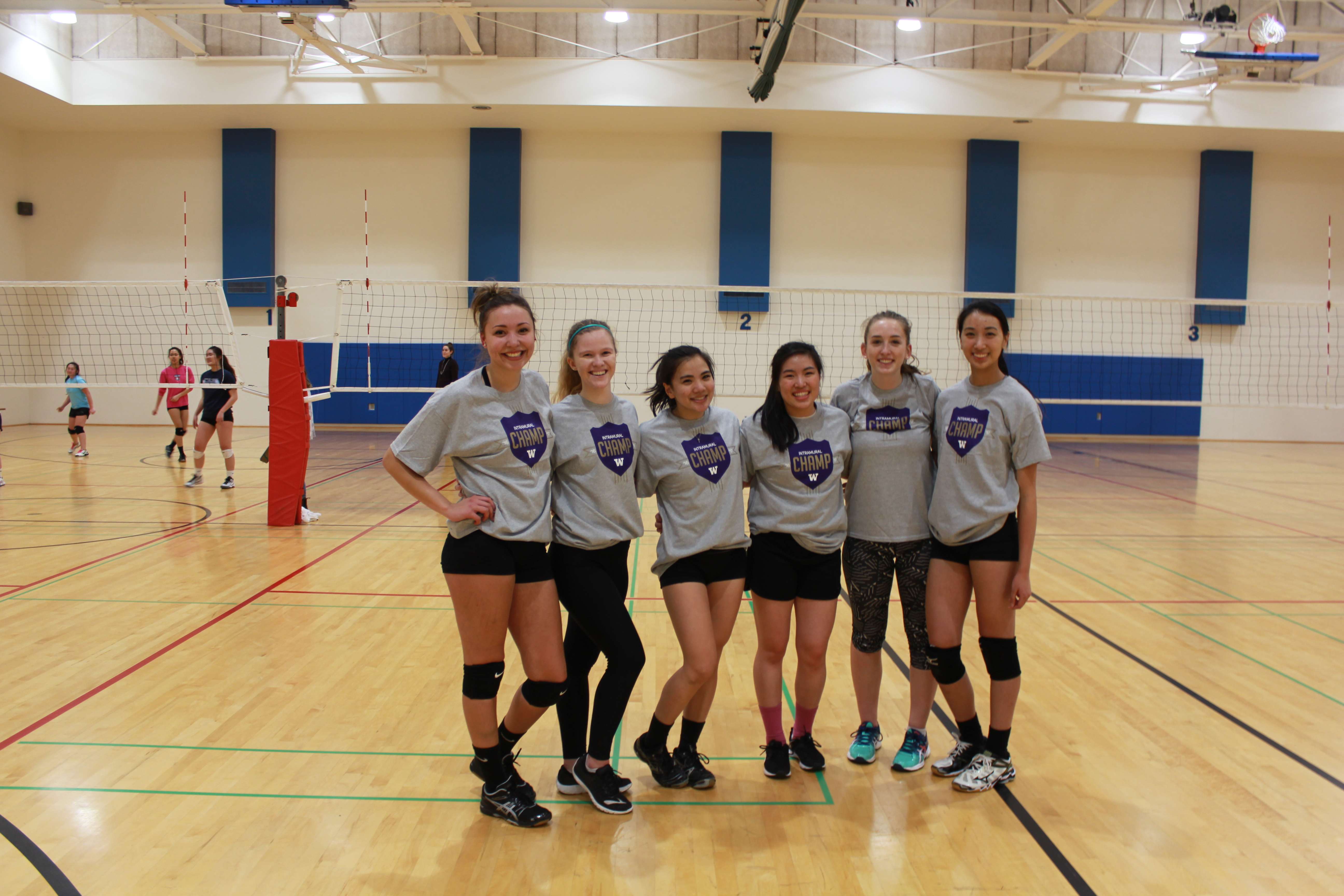 Volleyball WR - Set-sy