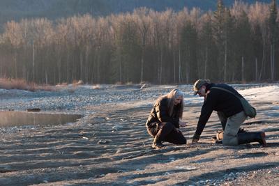 Joseph Kiegel and fellow Cascade Tracking Team member Mallory Clarke look for animal tracks on a sandbar on the Skykomish River. | Photo by David Moskowitz