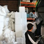 Marilyn Lauderdale of V&G Styro Recycle and Phong Pham, UW warehouse worker, sort through Styrofoam boxes in the Bryants Annex. Containers like these are used to ship medical supplies to UW Health Sciences where they are collected by Recycling & Solid Waste.