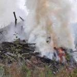 Traditional burn of slash pile.