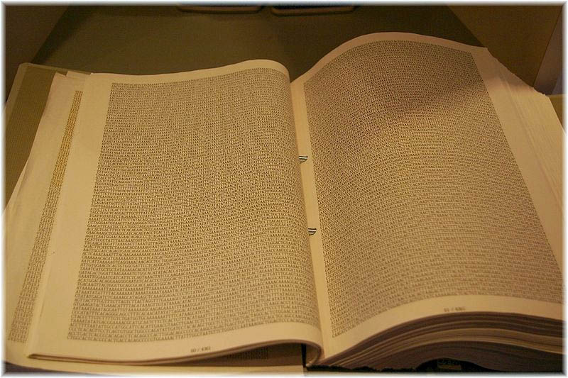 A Tokyo museum book contains page after page of the strings of DNA code letters A,G,C and T found in the human genome. A single letter change might influence health risks.