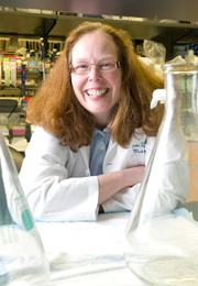 Cancer vaccine researcher Nora Disis heads the UW Institute of Translational Health Sciences.