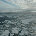 a photo of Arctic sea ice as seen from an ice breaker