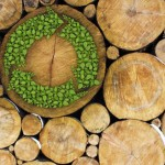 Log ends include one with green arrows going round and round signifying the sustainable potential of biofuels,