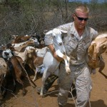 Two goats are carried out of a corral in Kenya for their immunizations.
