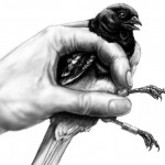 Drawing of hand and bird