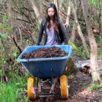 Student and wheel barrow of mulch