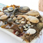 Platter of raw shellfish