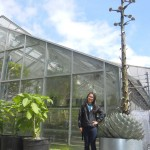 Person with huge agave plant.