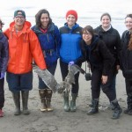 Seven students stand on beach holding bird carcass